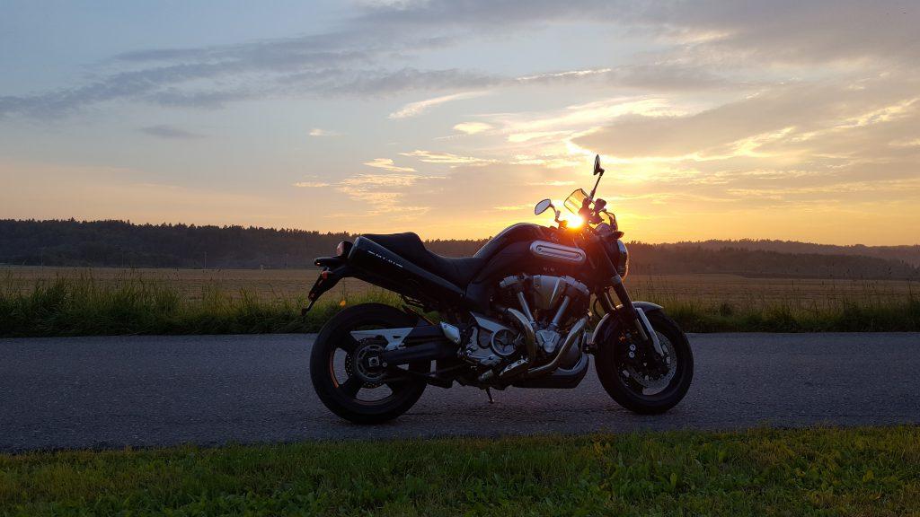 Elg i solnedgang, eller MT-01 til salgs, men kun for en god pris.